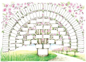 Släktträd körsbärsblom